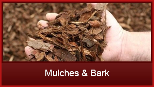 mulches_bark