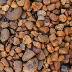 Sherwyn Garden Supplies-Golden_Brown_20-30mm_pebbles