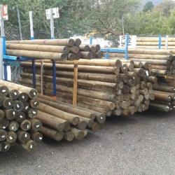 Treated Pine Poles