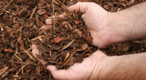 Mulches and Bark