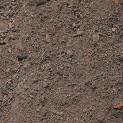 Soil and Compost